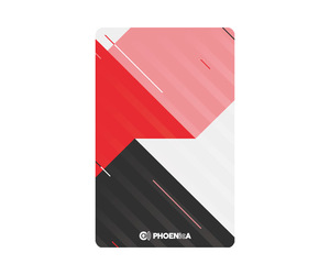 ゲームカード【フェニックス】フェニカ 2019_10 スタンダード1