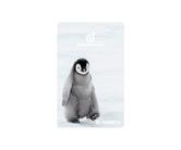 ゲームカード【フェニックス】フェニカ 2019_12 皇帝ペンギンのヒナ