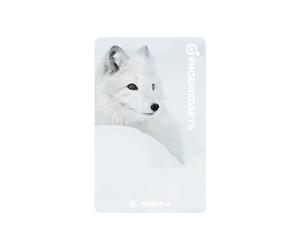 ゲームカード【フェニックス】フェニカ 2019_12 北極キツネ