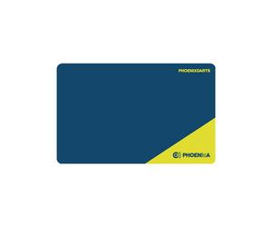 ゲームカード【フェニックス】フェニカ 2020_09 ブルー/イエロー